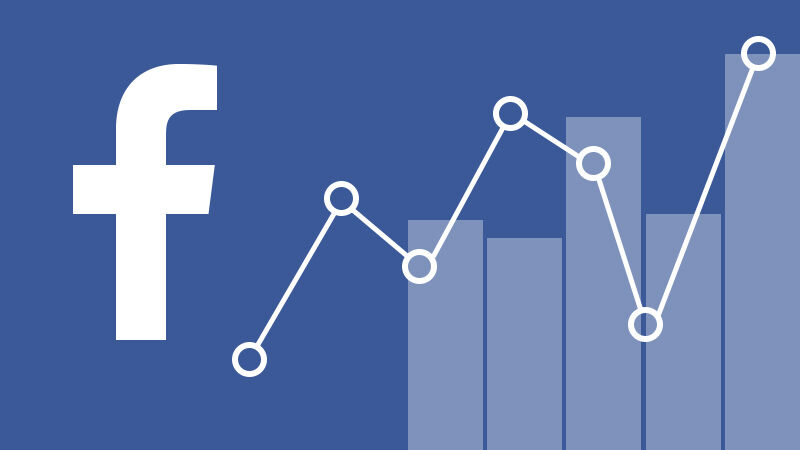 Facebook analytics nzdmi
