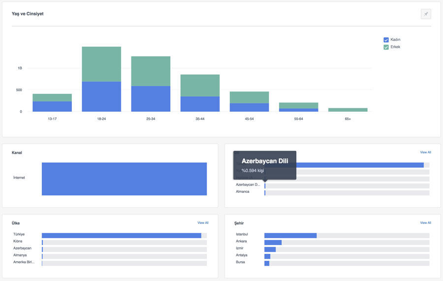 Facebook analytics demografi